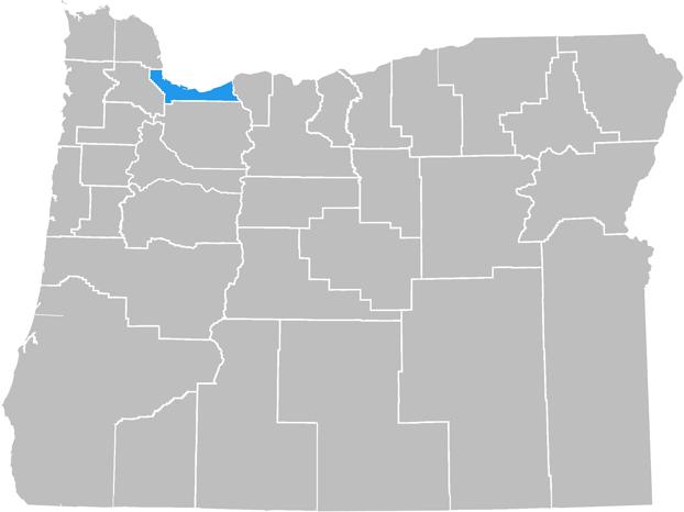Portland As-Built Companies